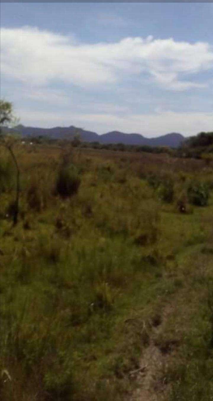 65 hectáreas en Tobatí - 3
