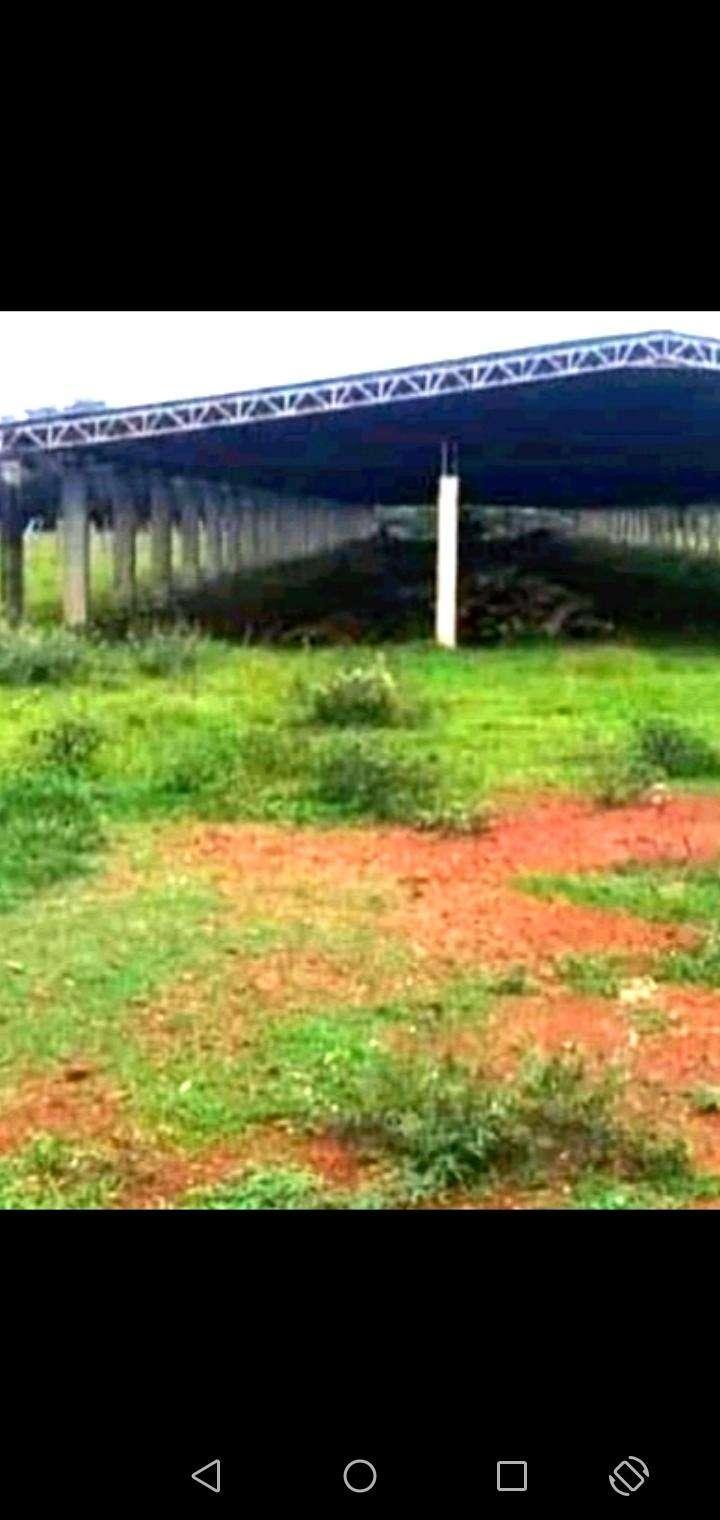 Terreno de 150 hectáreas en Tobatí - 0