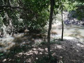Terreno con arroyo en Nueva Colombia a 90 metros del asfalto