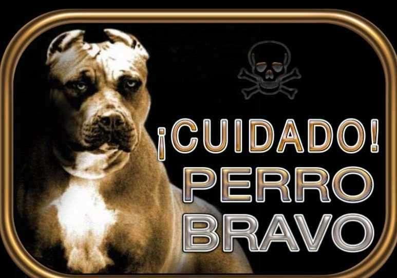 Cartel Cuidado perro bravo - 0