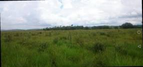 44 hectáreas en Paraguarí