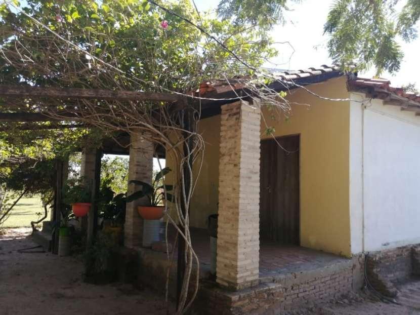 Campo en Cnel. Oviedo s/ asfalto Dr Blas Garay - 1