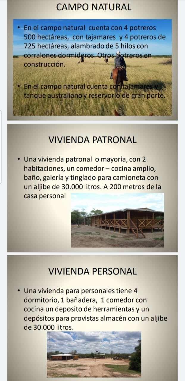 Estancia modelo 31.600 hectáreas en el Chaco - 3