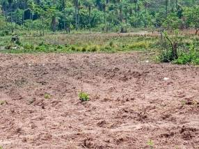 Terreno de 21 hectáreas en Ypacaraí