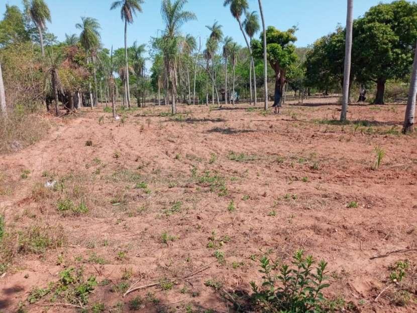 Terreno de 21 hectáreas en Ypacaraí - 1