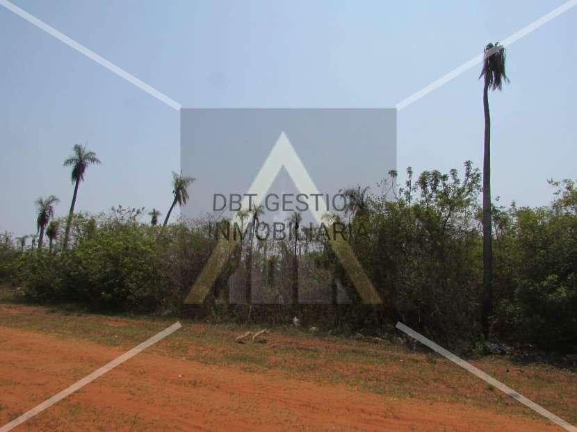 4 terrenos en Capiatá Km 24 - 0