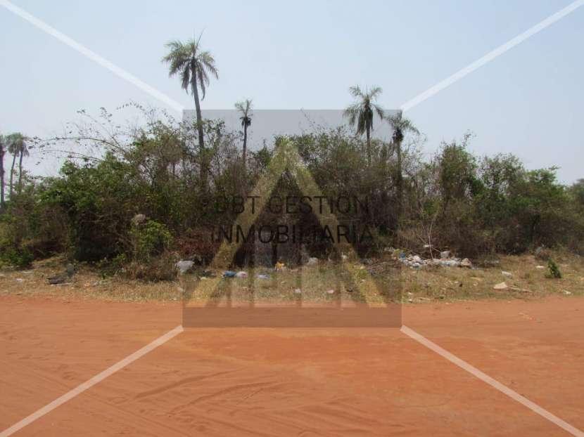 4 terrenos en Capiatá Km 24 - 2