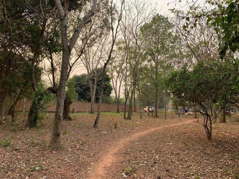 Terrenos en Itá - 3