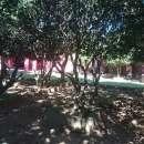 Casa en Loma Grande - 4