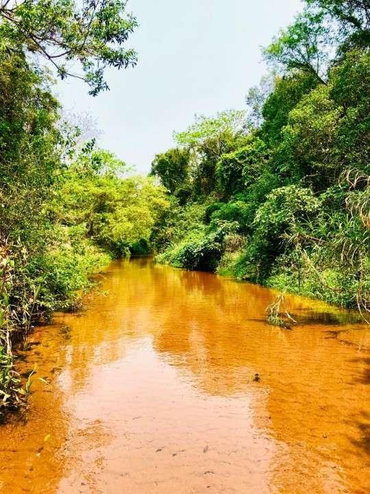 Terrenos 50 hectáreas con arroyo y casa familiar - 4