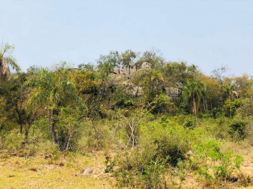 Terrenos 50 hectáreas con arroyo y casa familiar - 7
