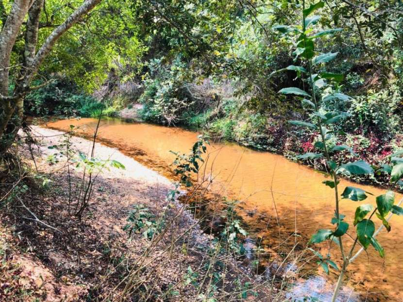 Terrenos 50 hectáreas con arroyo y casa familiar - 5