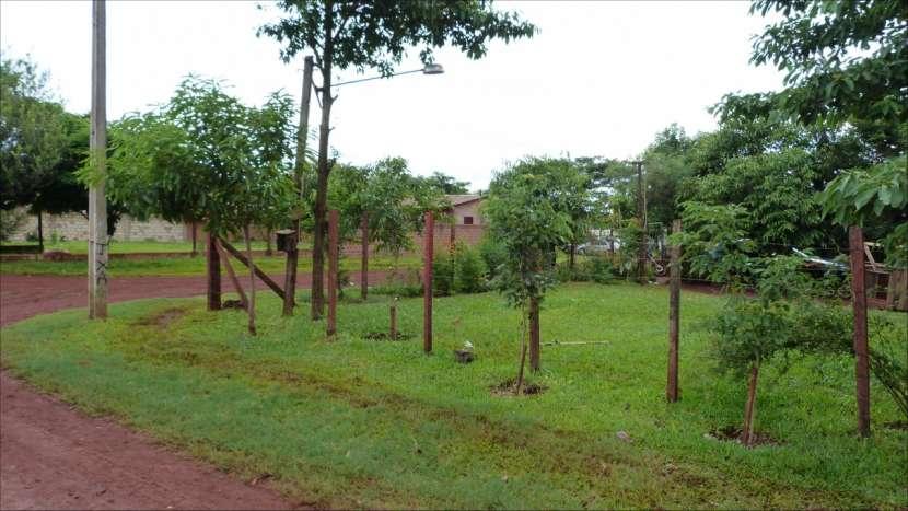 Terrenos en Minga Guazú - 5