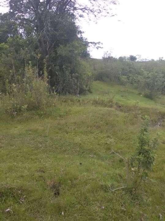 Terreno en Yaguarón - 4