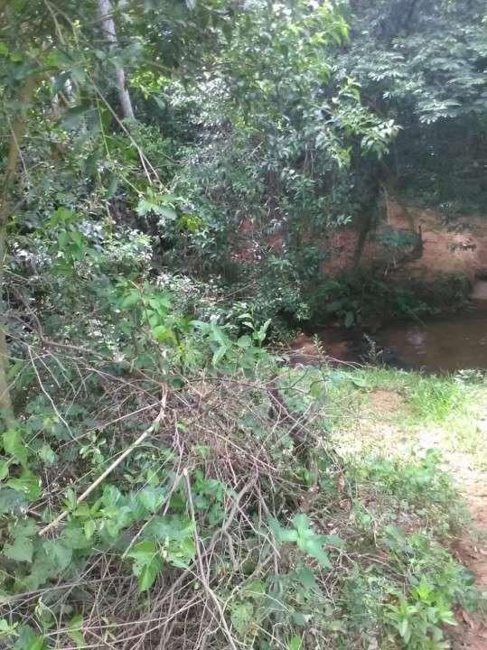 Terreno en Yaguarón - 1