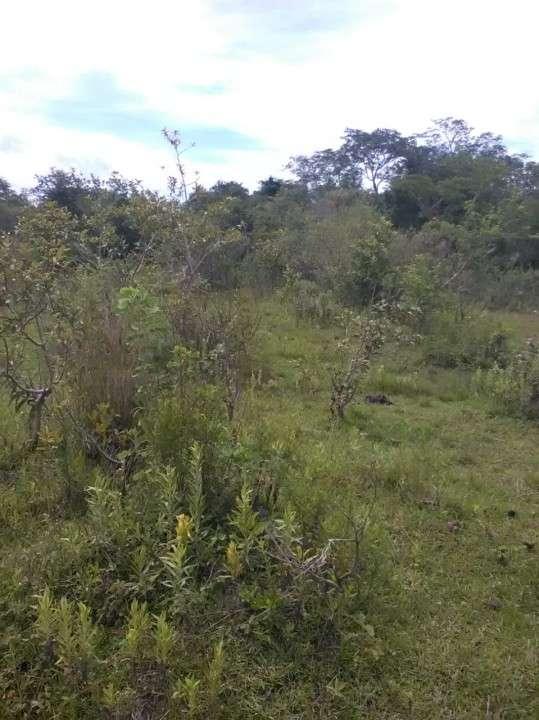 Terreno en Yaguarón - 3