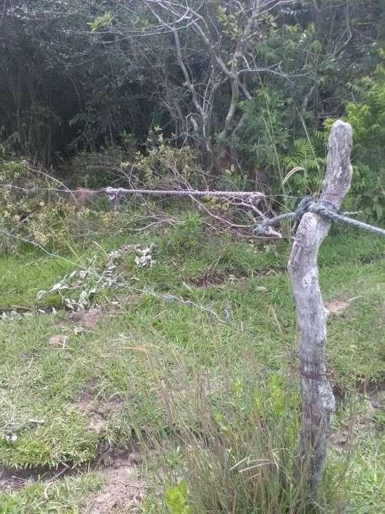 Terreno en Yaguarón - 8
