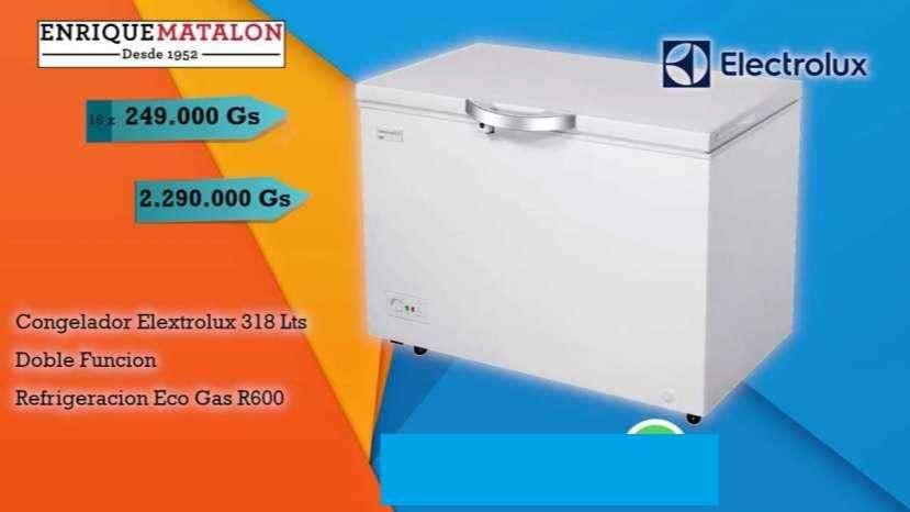 Congelador Horizontal Elextrolux 318 Lits - 0
