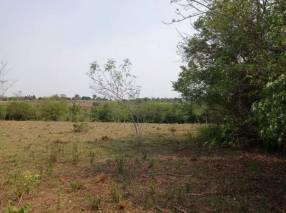 Terreno de 10 hectáreas con arroyo y bosque