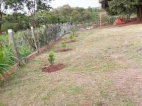 Granja de 6 hectáreas