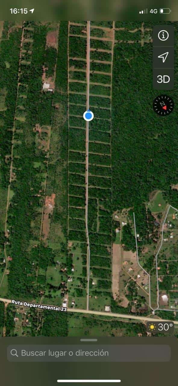 2 terrenos en Patiño con vista al lago Ypacaraí - 4