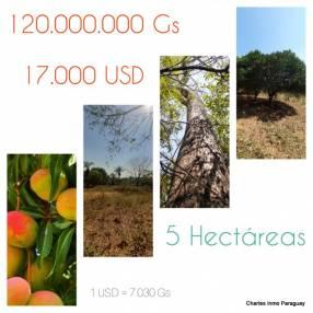 Terreno de 5 hectáreas La Colmena