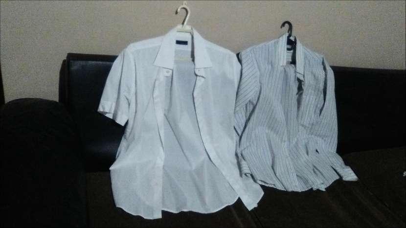 Camisas de marca Usadas - 2