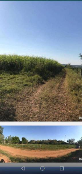 Terreno de 8 hectáreas en Nueva Italia