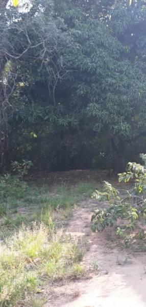 Terreno de 5 hectáreas en Ypacaraí
