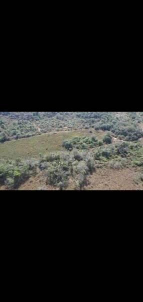 Terreno de 102 hectáreas en Nueva Colombia