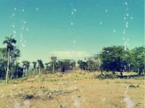 10 hectáreas en Caacupé