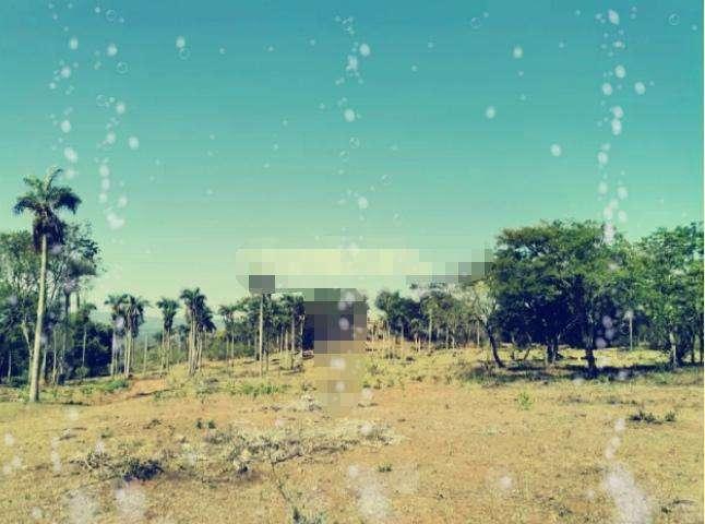 10 hectáreas en Caacupé - 0