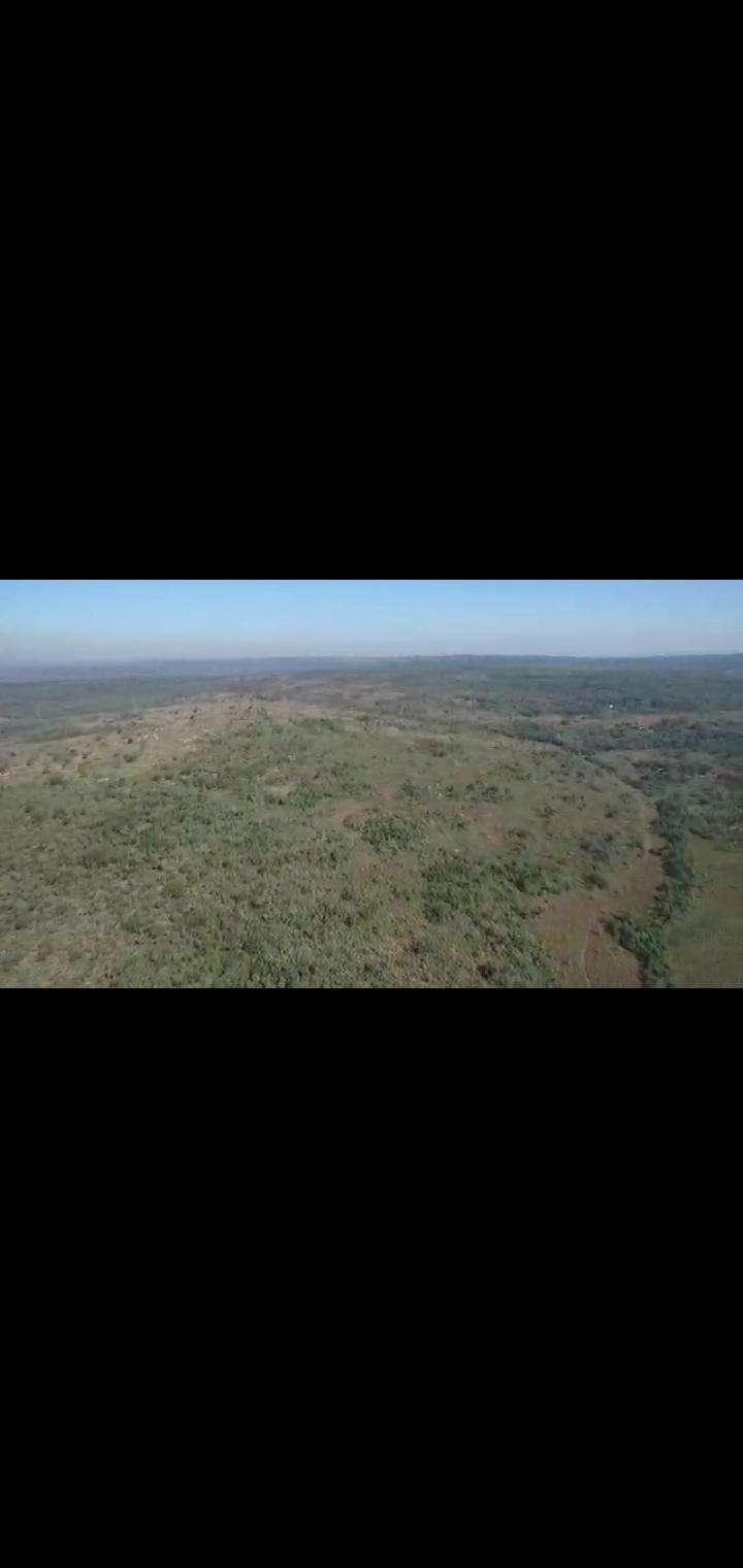 Terreno de 102 hectáreas en Nueva Colombia - 2