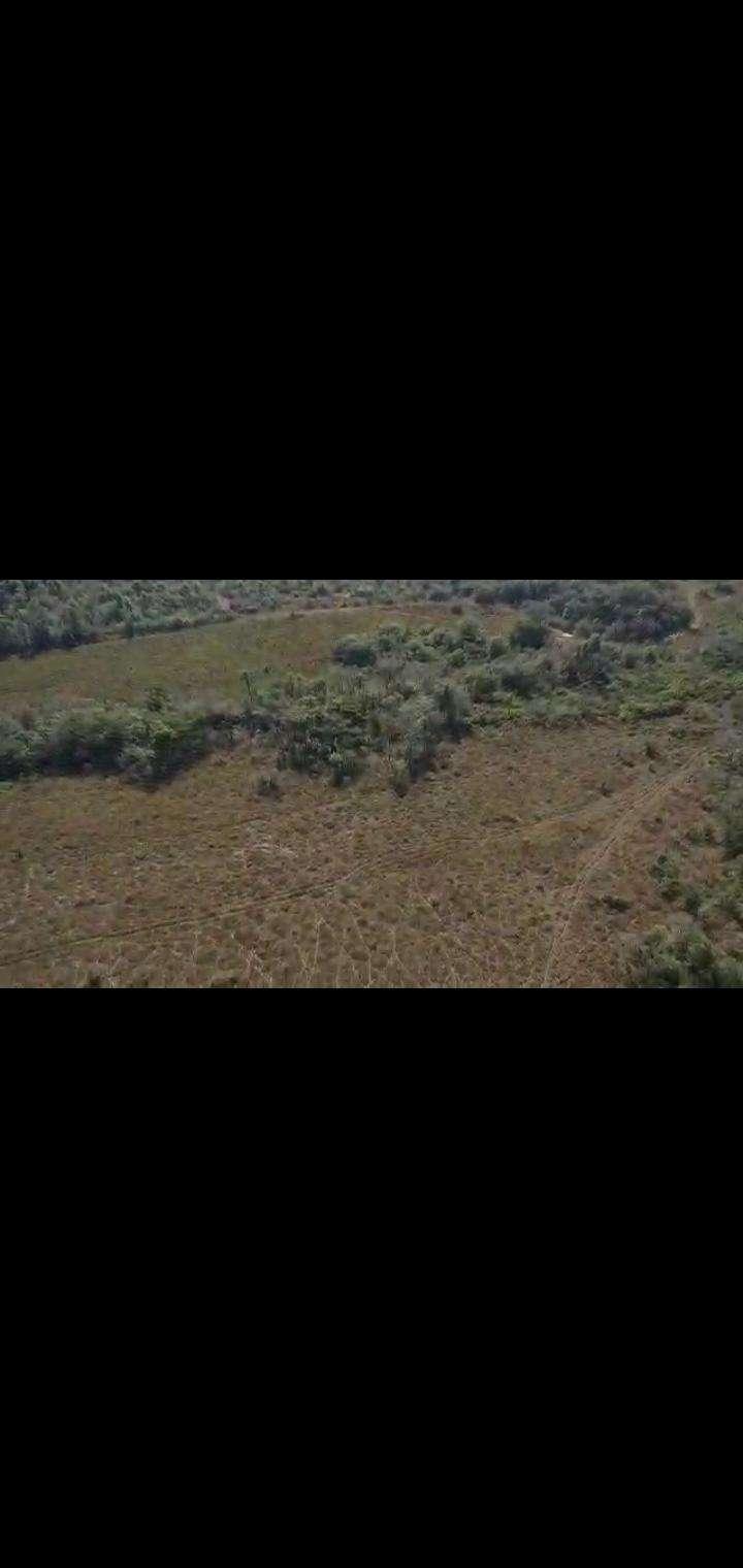 Terreno de 102 hectáreas en Nueva Colombia - 3