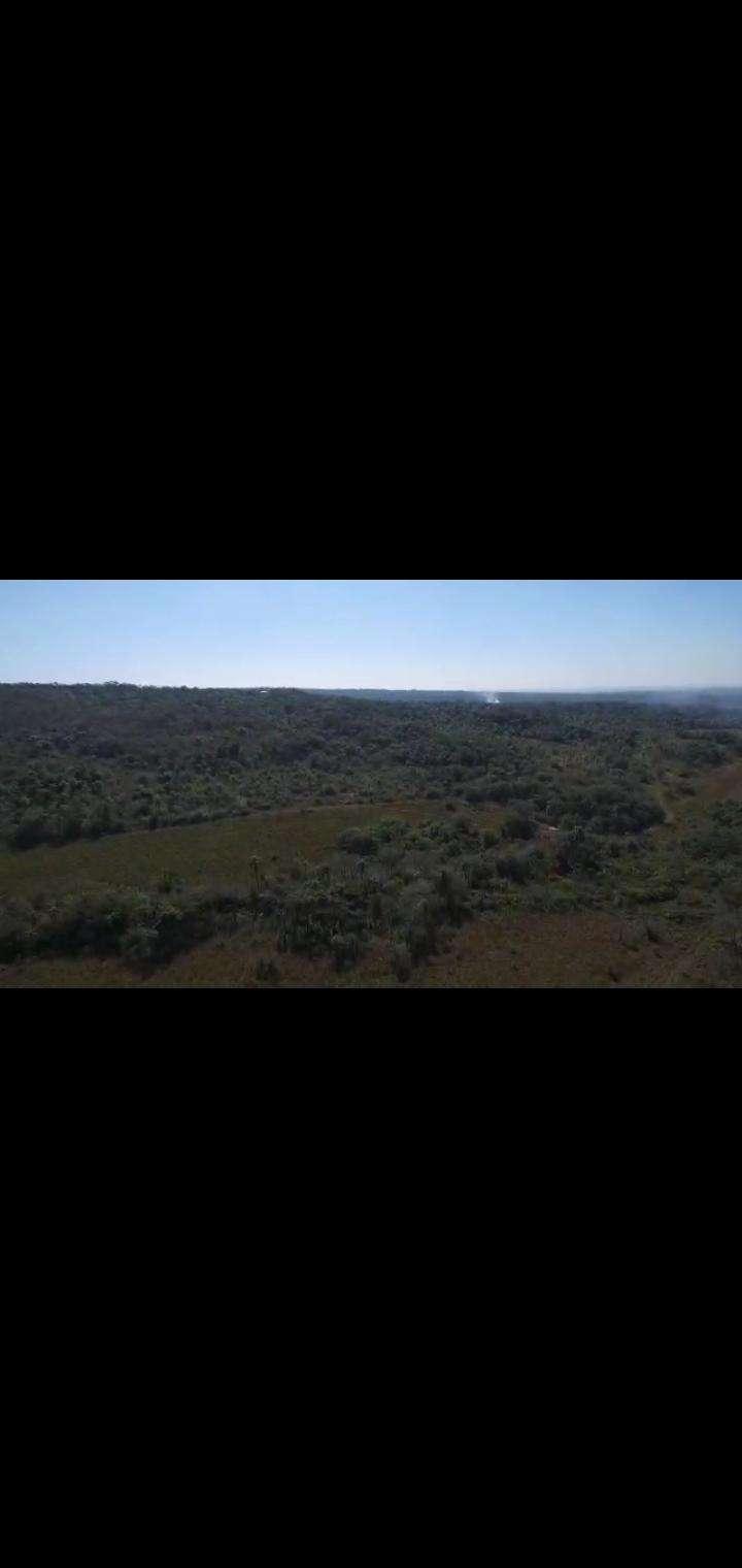 Terreno de 102 hectáreas en Nueva Colombia - 5