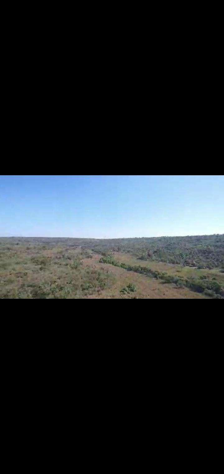 Terreno de 102 hectáreas en Nueva Colombia - 6