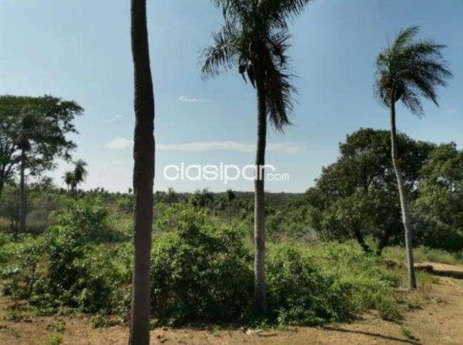 10 hectáreas en Caacupé - 6