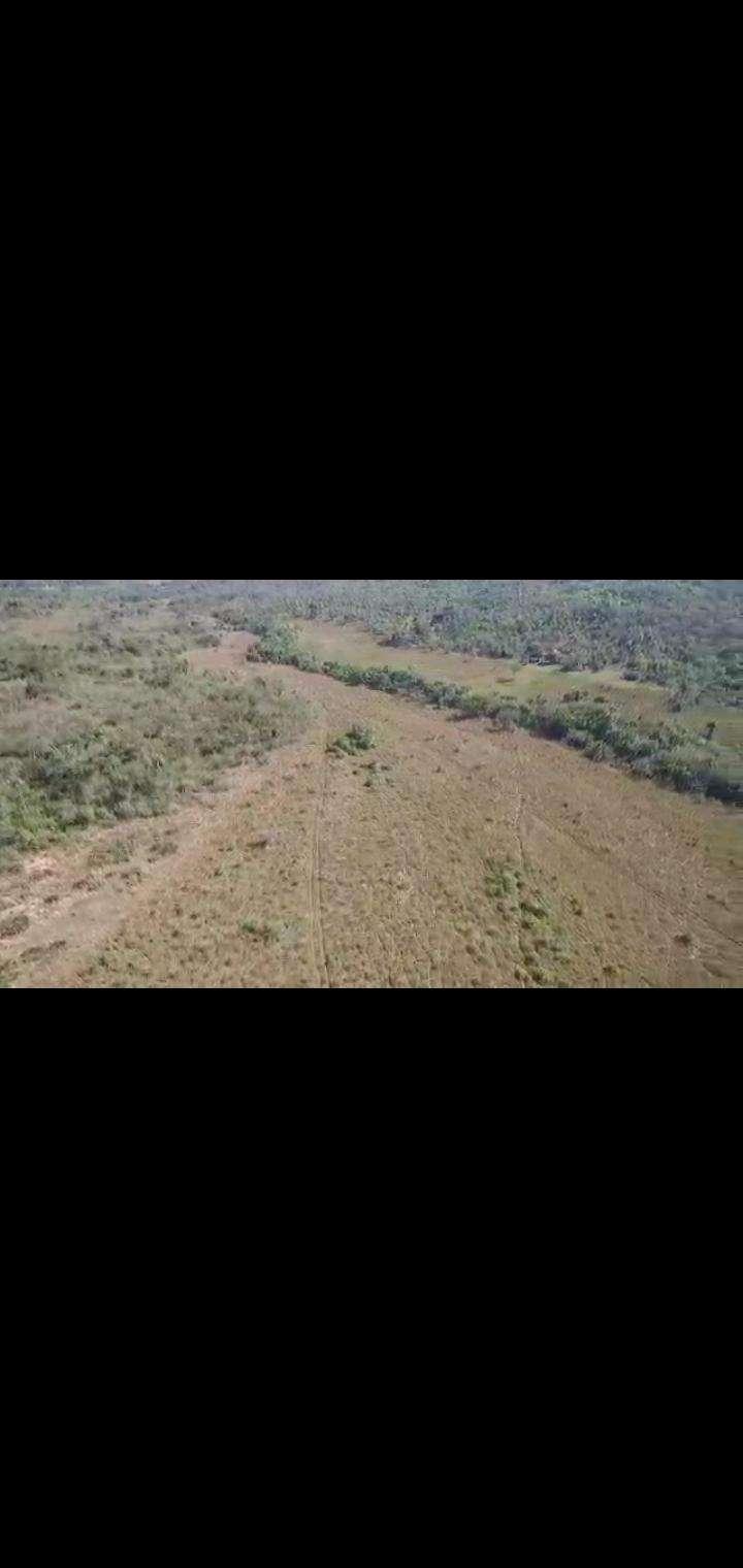 Terreno de 102 hectáreas en Nueva Colombia - 7
