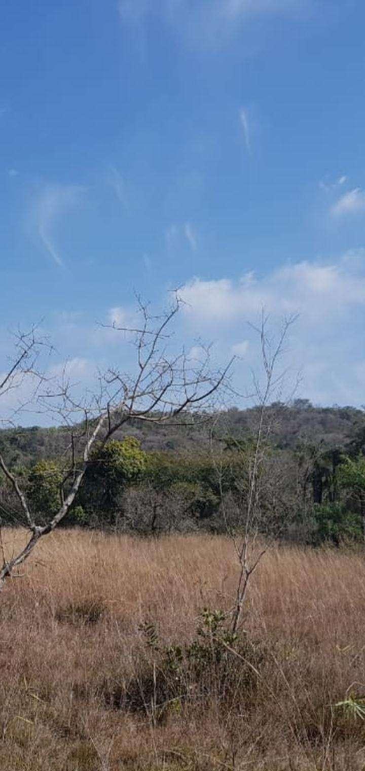 Terreno de 102 hectáreas en Nueva Colombia - 8