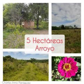 Terreno de 5 hectáreas con arroyo en La Colmena