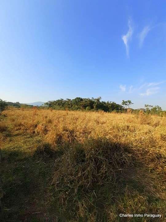 Terreno 14 hectáreas con casa y arroyo en La Colmena - 2