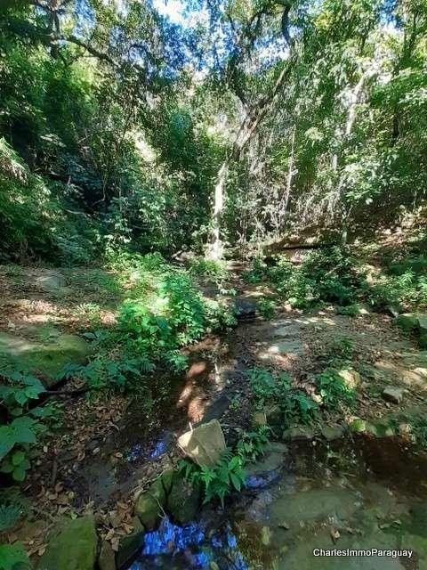Terreno 62 hectáreas en zona de Tebicuary-mí - 5