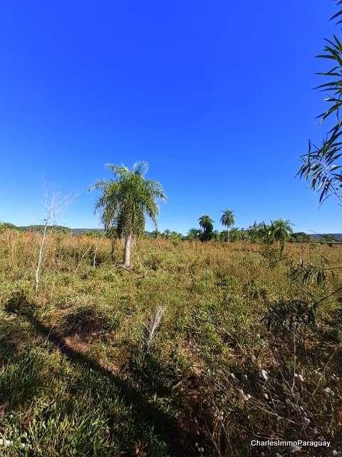 Estancia 430 hectáreas en La Colmena - 8