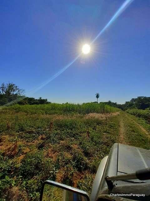 Terreno 62 hectáreas en zona de Tebicuary-mí - 0