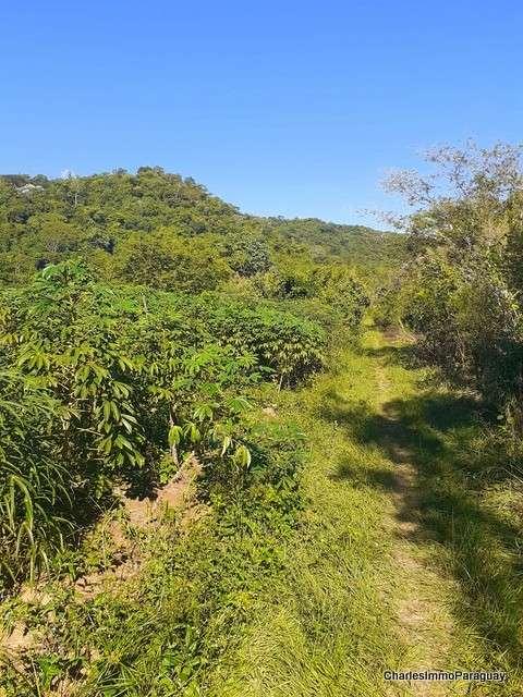 Terreno 62 hectáreas en zona de Tebicuary-mí - 8