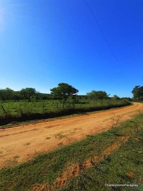 Estancia 430 hectáreas en La Colmena - 7