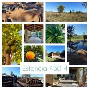Estancia 430 hectáreas en La Colmena