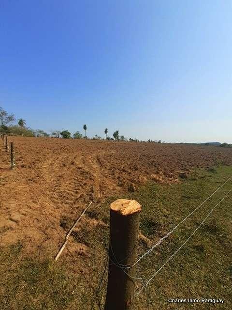 Terreno 25 hectáreas con casa y arroyo en en La Colmena - 1