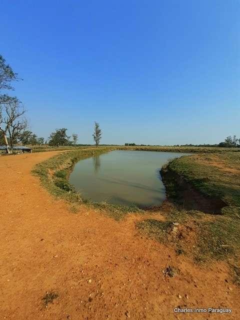 Estancia de 330 hectáreas en Quiindy - 3