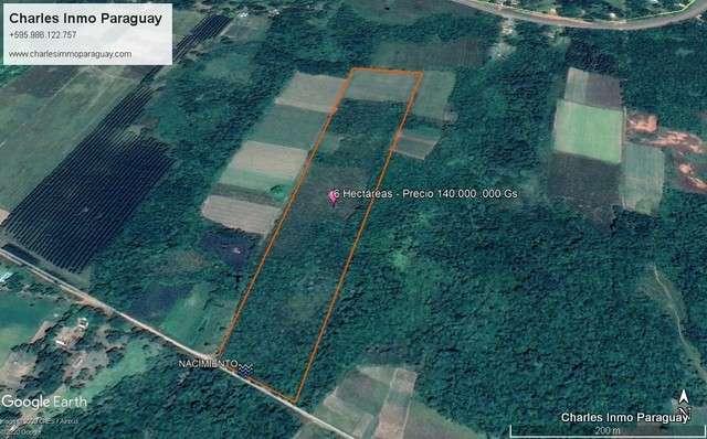 Terreno de 6 hectáreas en La Colmena Tebicuary - 1